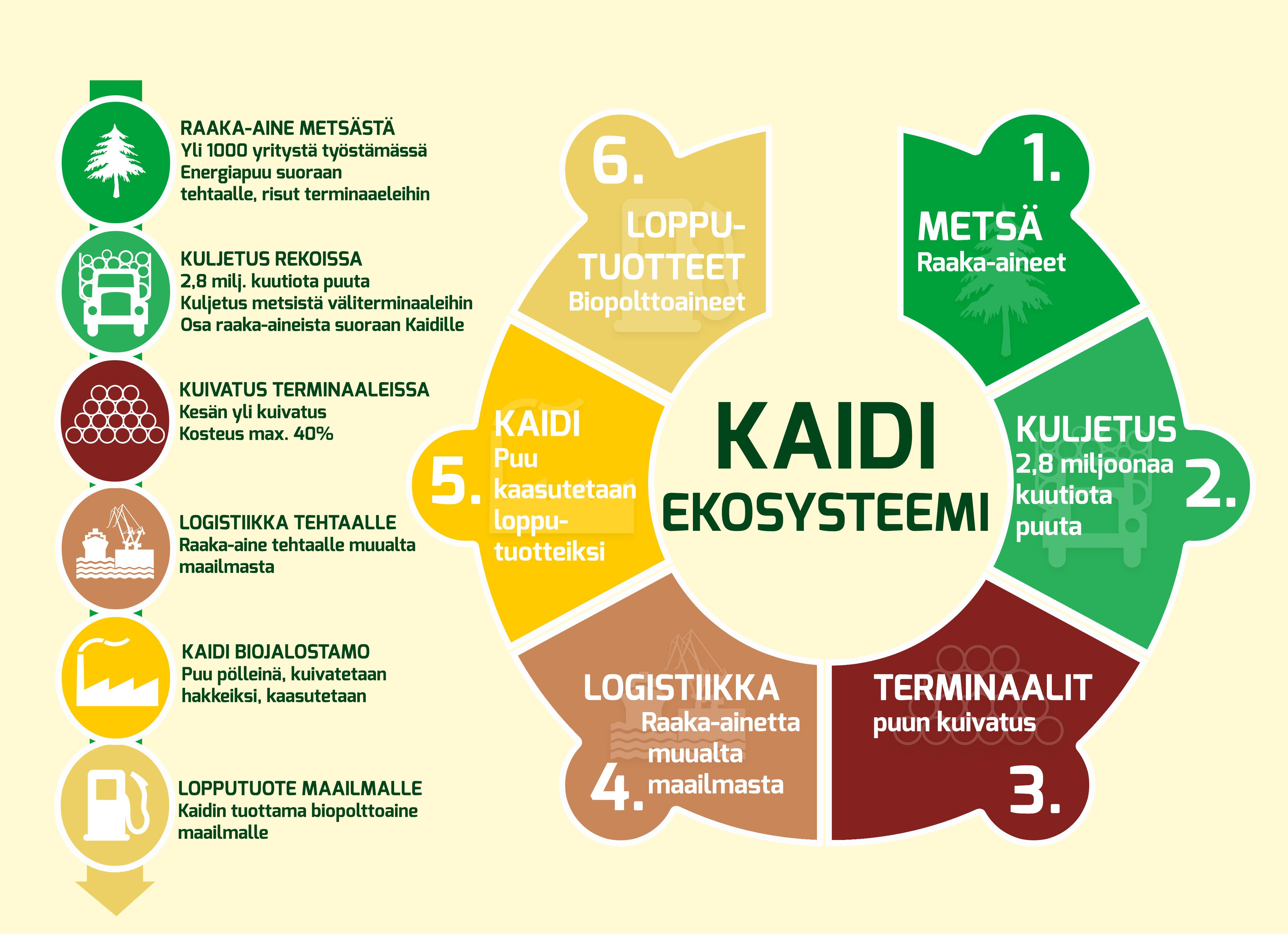 kaidi-ekosysteemi