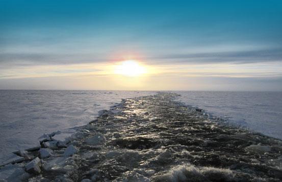 arktisuus